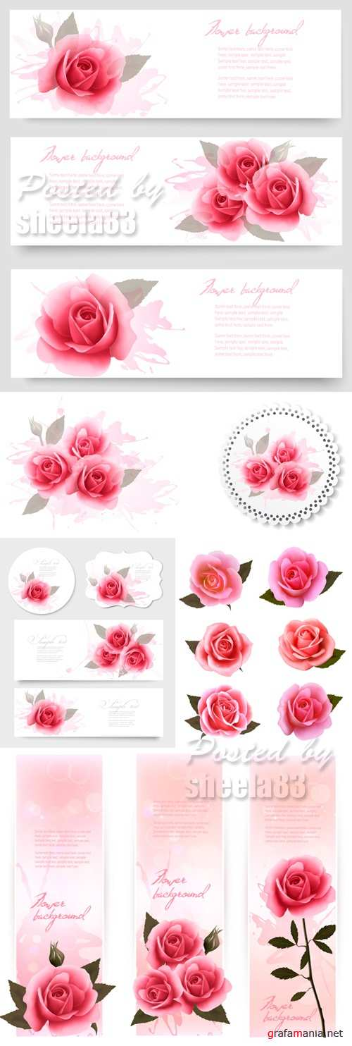 Pink Roses Cards Vector