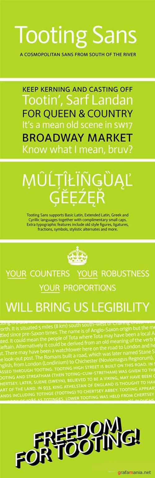 Tooting Sans Font Family
