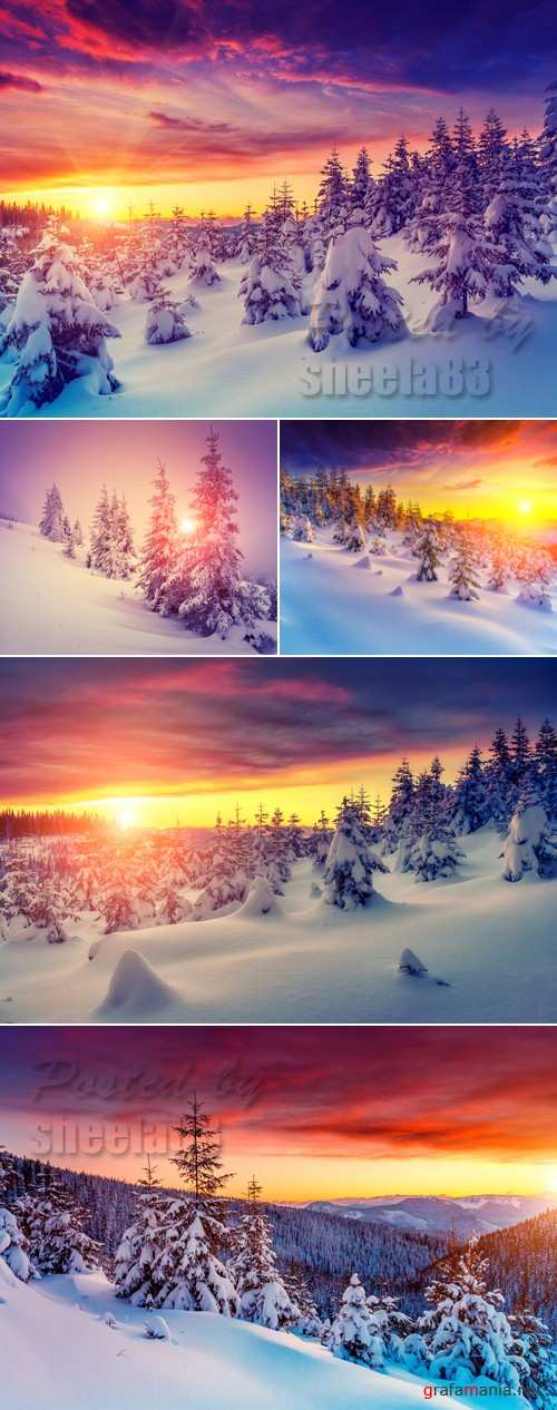 Stock Photo - Winter Nature & Sunset
