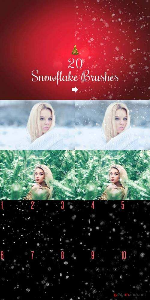 CreativeMarket Snowflake brushes