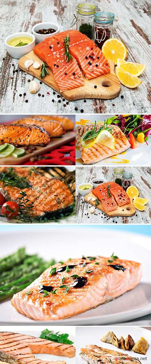 Stock Photo Fillet of salmon with vegetables