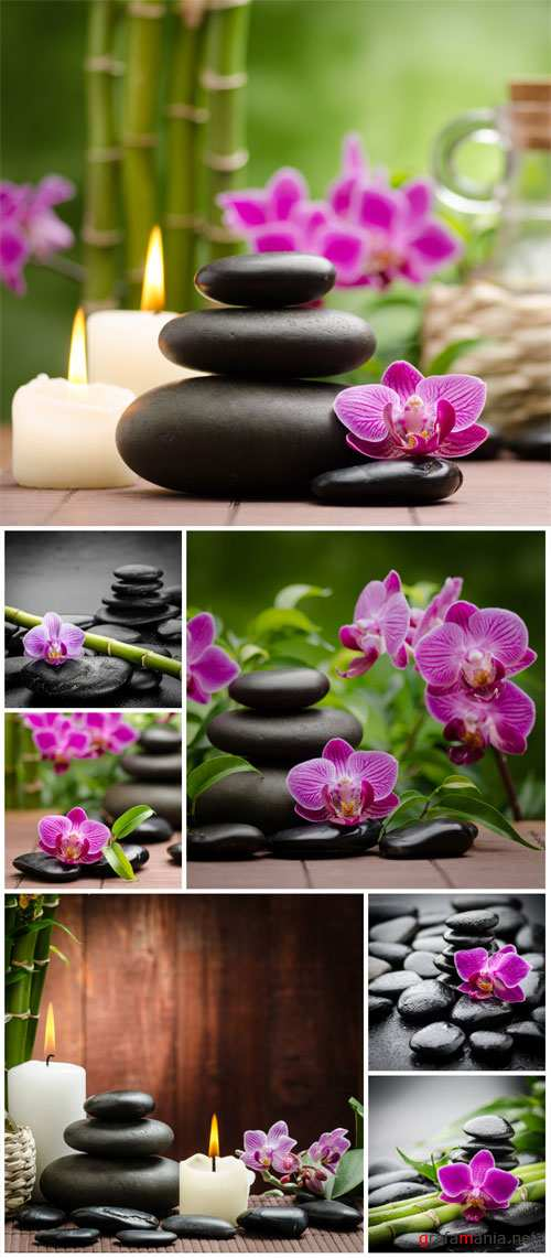 Spa backgrounds, orchid and spa stones - stock photos