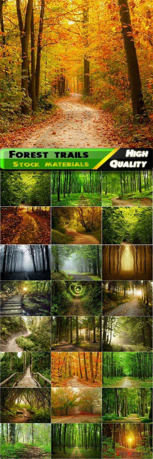 Beautiful pictures of forest trails and roads - 25 HQ Jpg