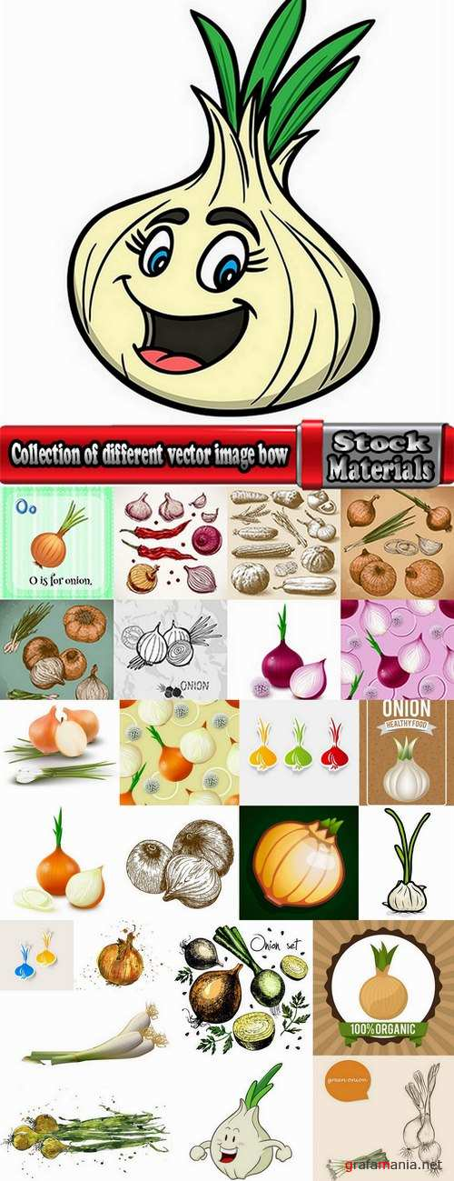 Collection of different vector image bow 25 Eps