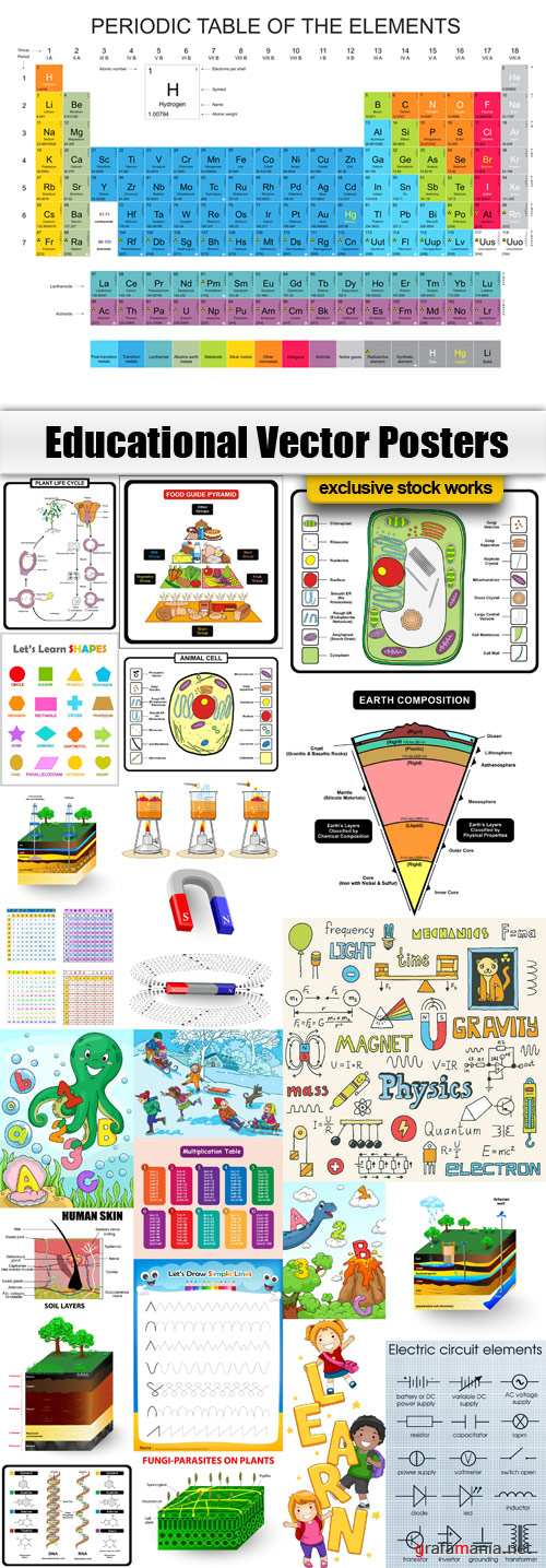 Educational Vector Posters Stock - EPS