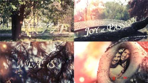 Hollow Love - After Effects Project (Videohive)