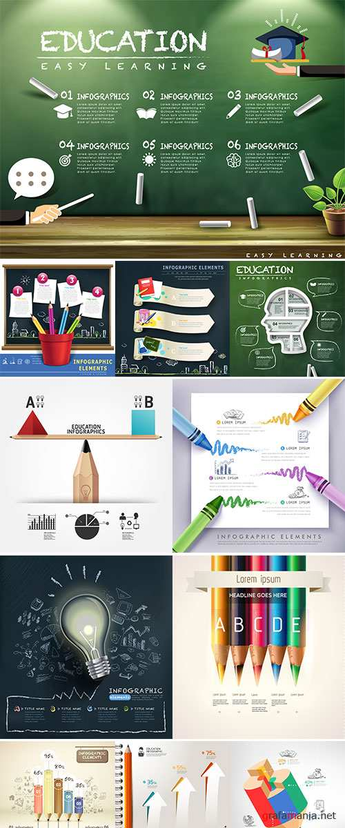 Stock Education infographics, vector