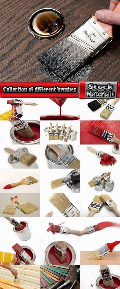 Collection of different brushes and paint brushes for painting construction 25 HQ Jpeg