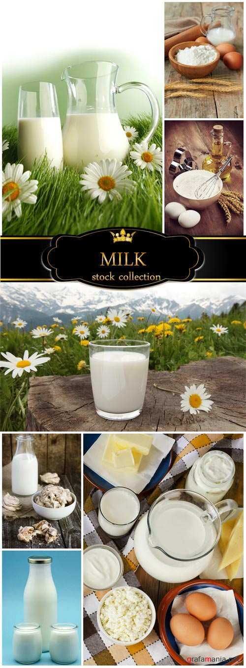 Milk, eggs and flour - stock photos