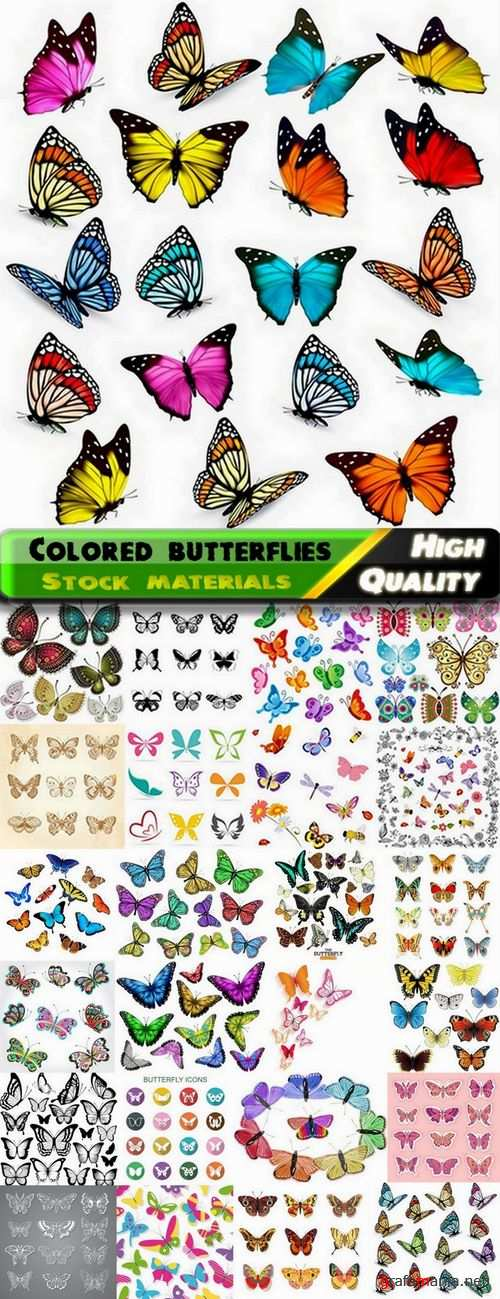 Colored butterflies with different patterns on the wings - 25 Eps