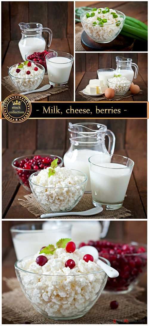 Milk, cheese, berries - stock photos