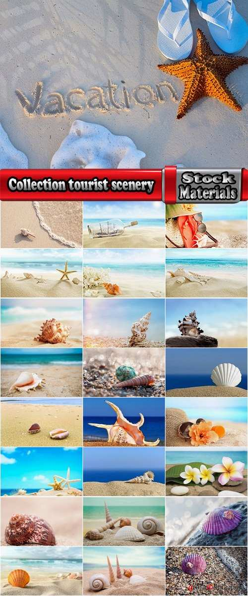 Collection tourist scenery sea beach vacation shell summer vacation 25 HQ Jpeg