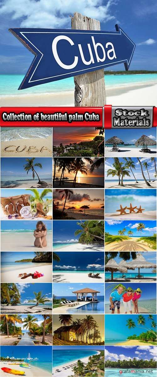 Collection of beautiful palm tree beach of a bungalow Cuba sand sea vacation 25 HQ Jpeg