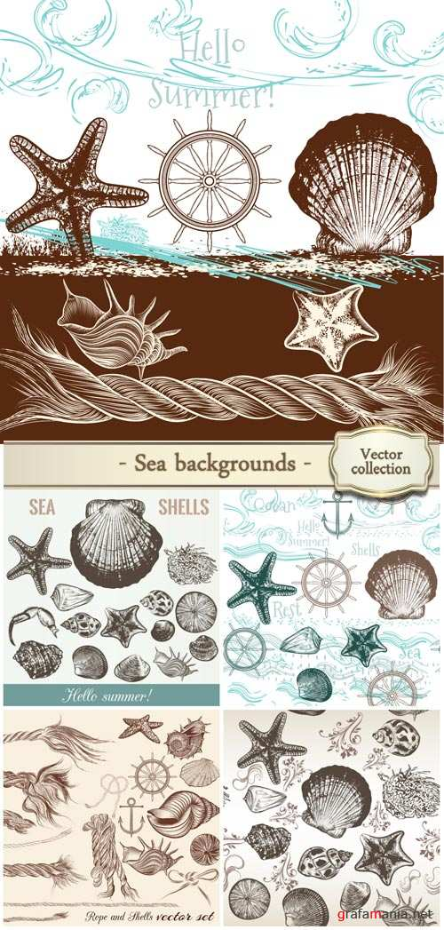Collection of hand drawn sea elements rope and shells in vintage style