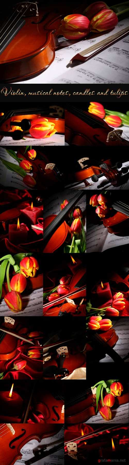 Violin, musical notes, candles and tulips