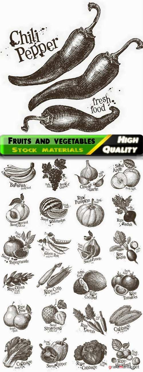 Fruits and vegetables hand drawn illustration - 25 Eps