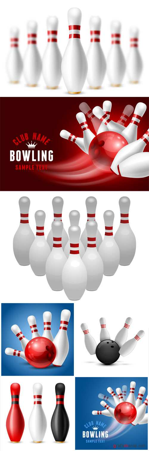 Vector illustration on sport bowling theme