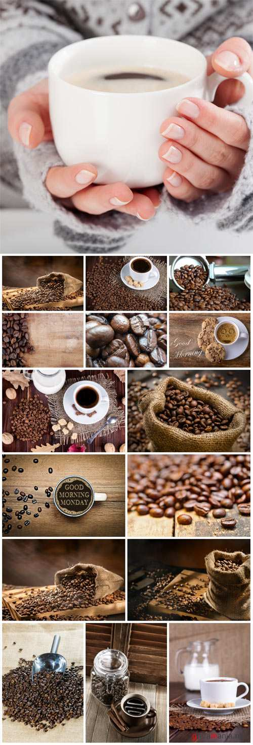 Coffee cup of coffee, coffee beans - Stock photo