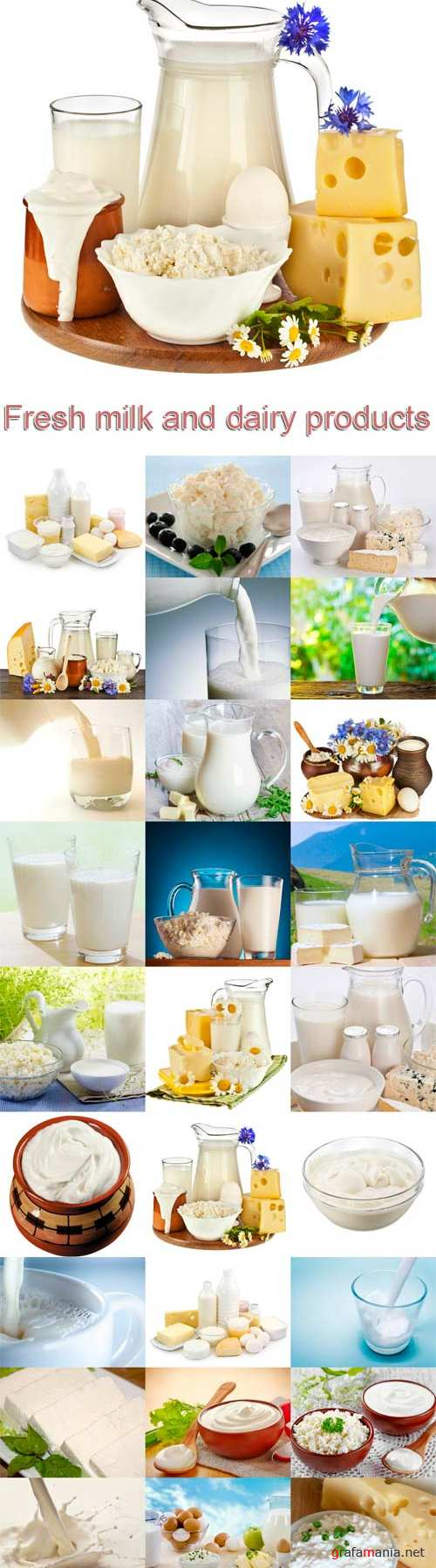 Fresh milk and dairy products