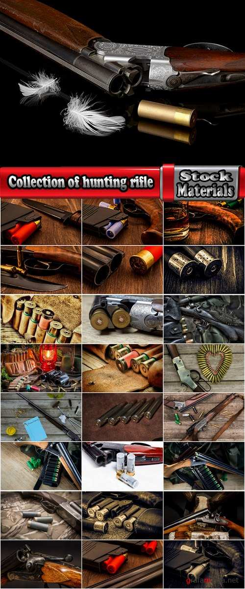 Collection of hunting rifle hunting ammunition cartridge guns 25 HQ Jpeg