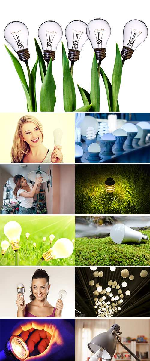 Stock Image Light bulb and nature