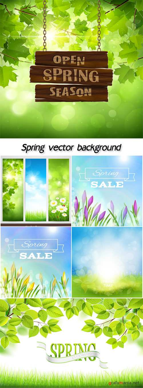 Spring vector background with flowers and leaves