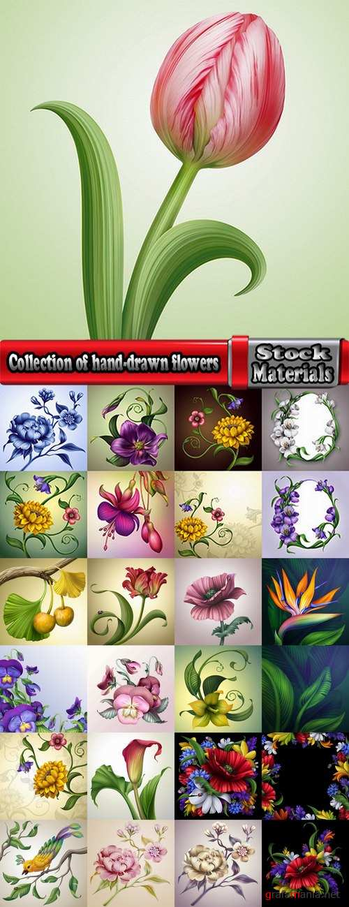 Collection of hand-drawn flowers tulip background is the gift card 25 HQ Jpeg