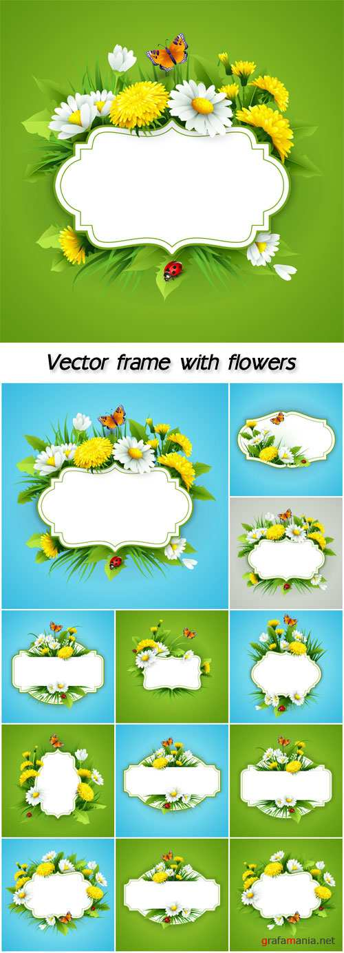 Vector frame with flowers, dandelions and daisies