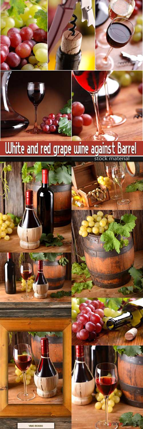 White and red grape wine against Barrel