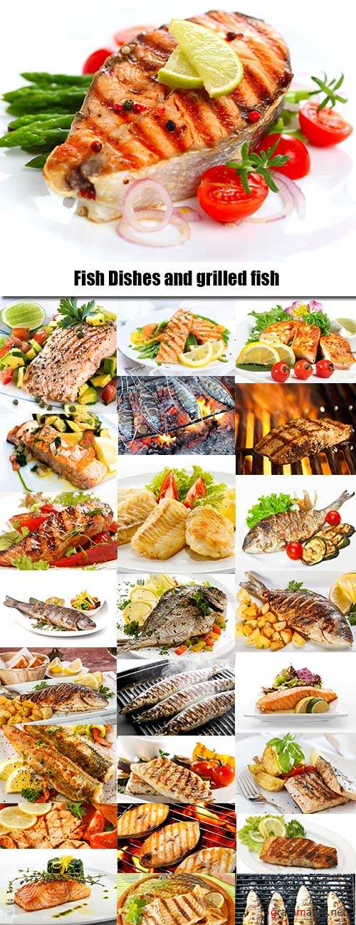 Fish Dishes and grilled fish