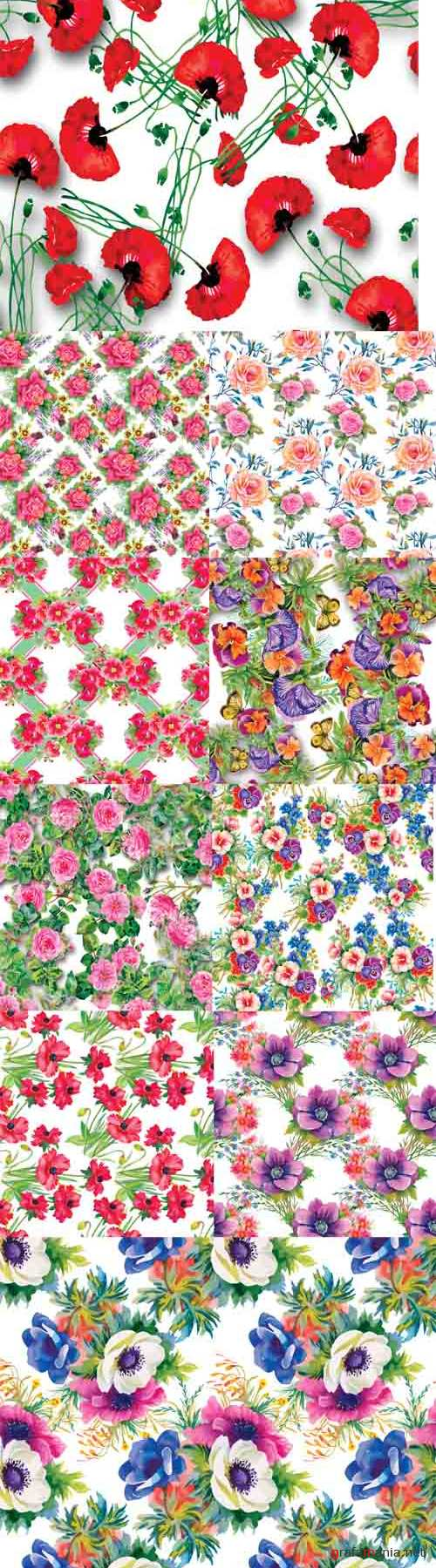 Vector Seamless Patterns with Beautiful Flowers