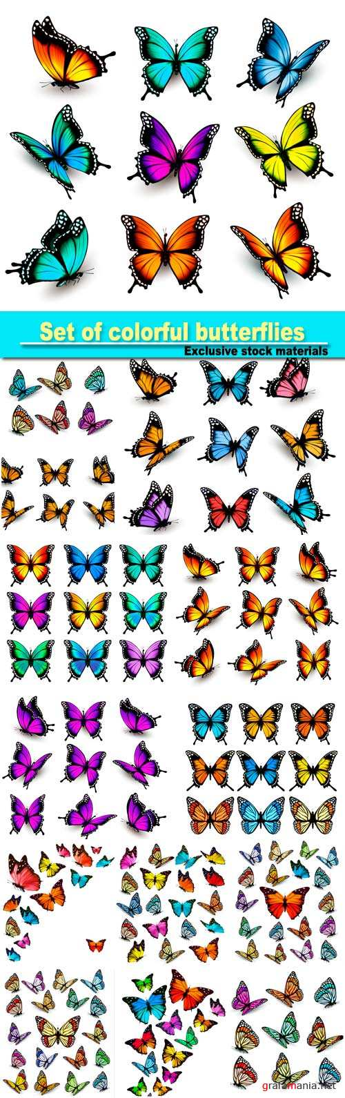 Set of colorful butterflies vector #7