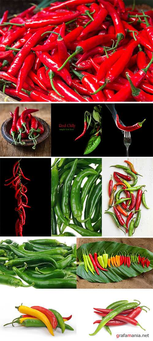 Fresh Red and Green Chillies - Stock Image