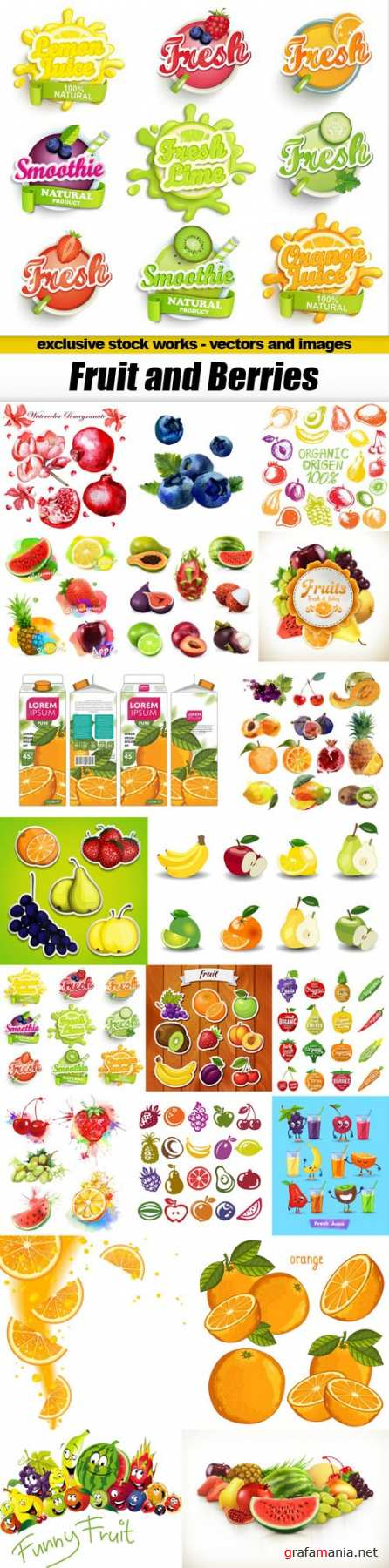 Fruit and Berries - 20xEPS