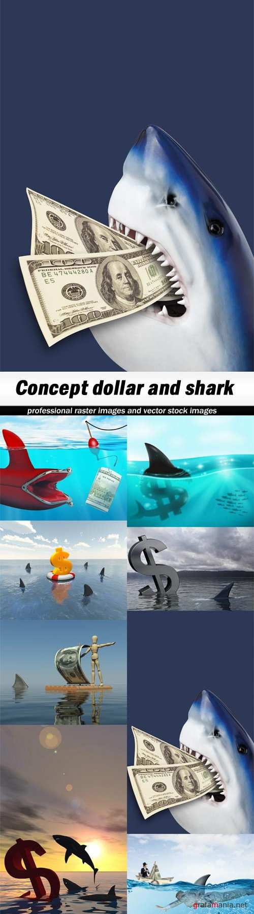 Concept dollar and shark-8xJPEGs