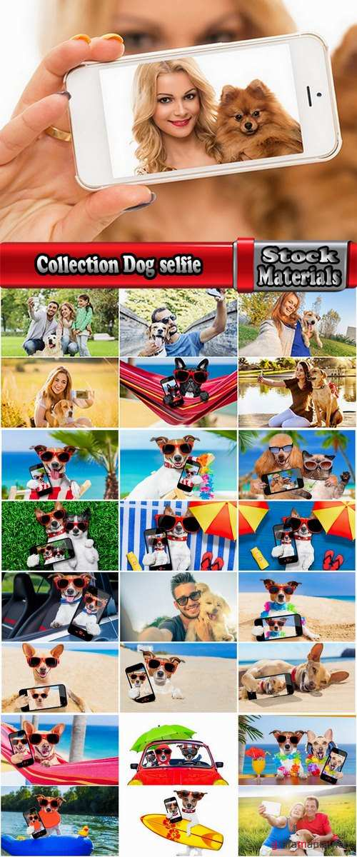 Collection Dog selfie photography man with an animal 25 HQ Jpeg
