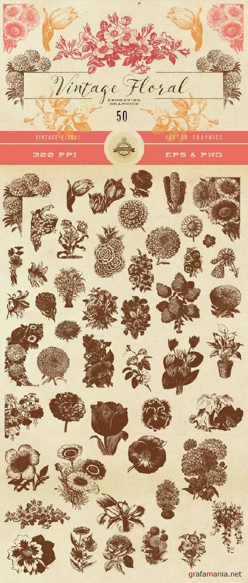 Vintage Flower Vector Graphics - 576425