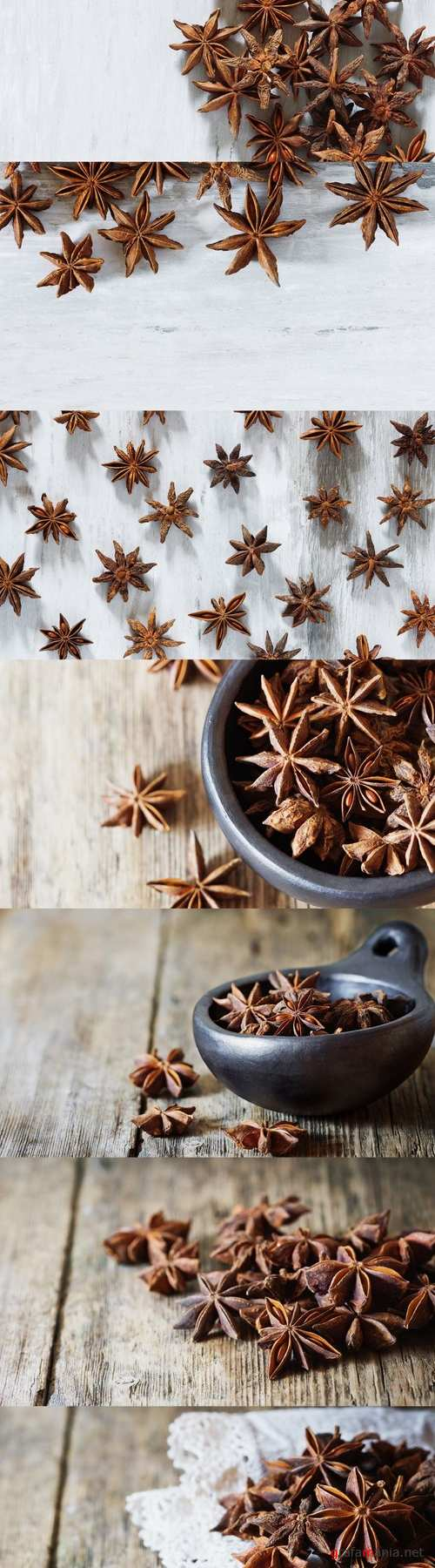 Star anise spice and fruit seeds