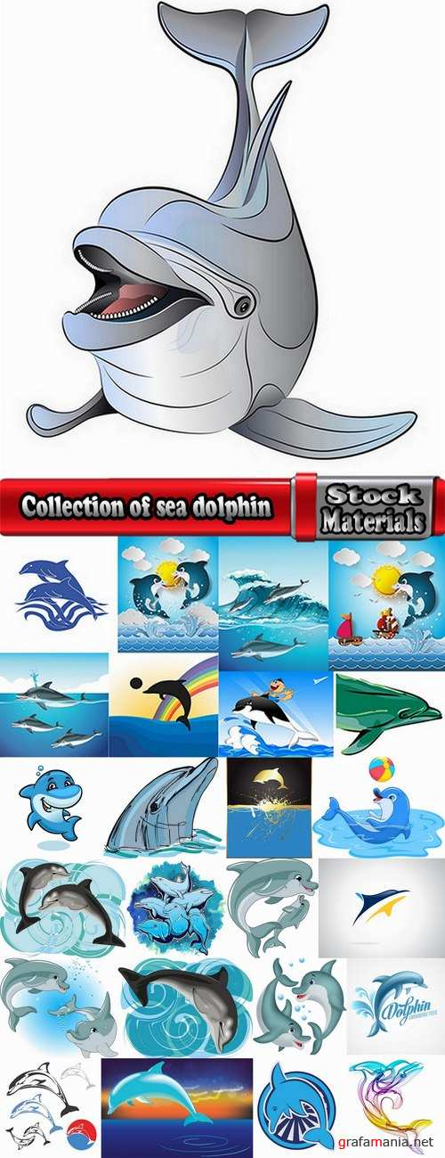Collection of sea dolphin illustration for children's books 25 EPS