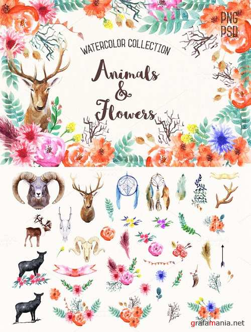 Watercolor Animals & Flowers - 228928