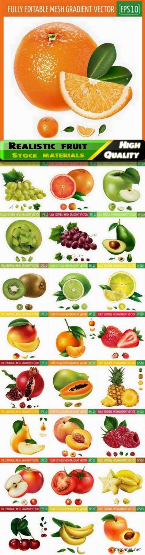 Illustration of realistic fruit and vegetable 2 - 25 Eps