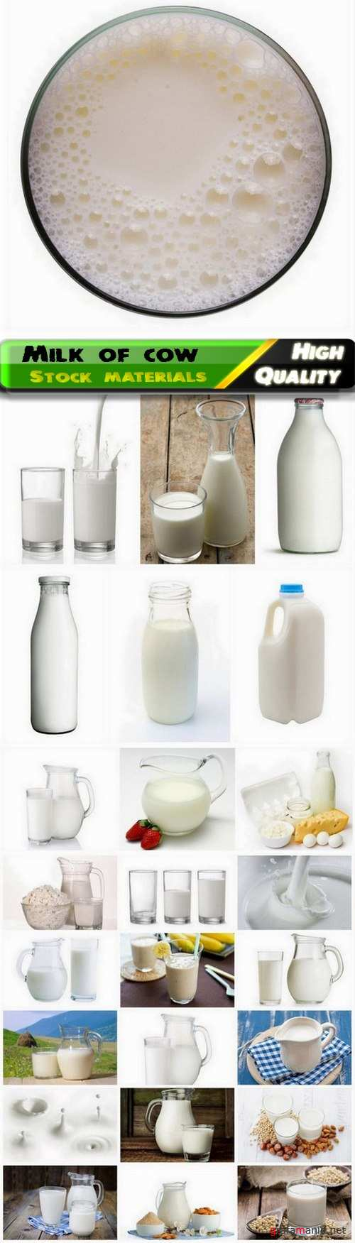 Milk of cow in glass and jug and dairy products - 25 HQ Jpg