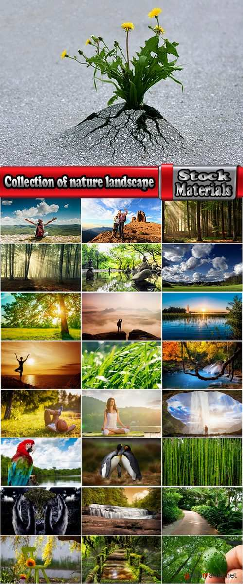 Collection of nature landscape forest waterfall sprout vacation trip 25 HQ Jpeg
