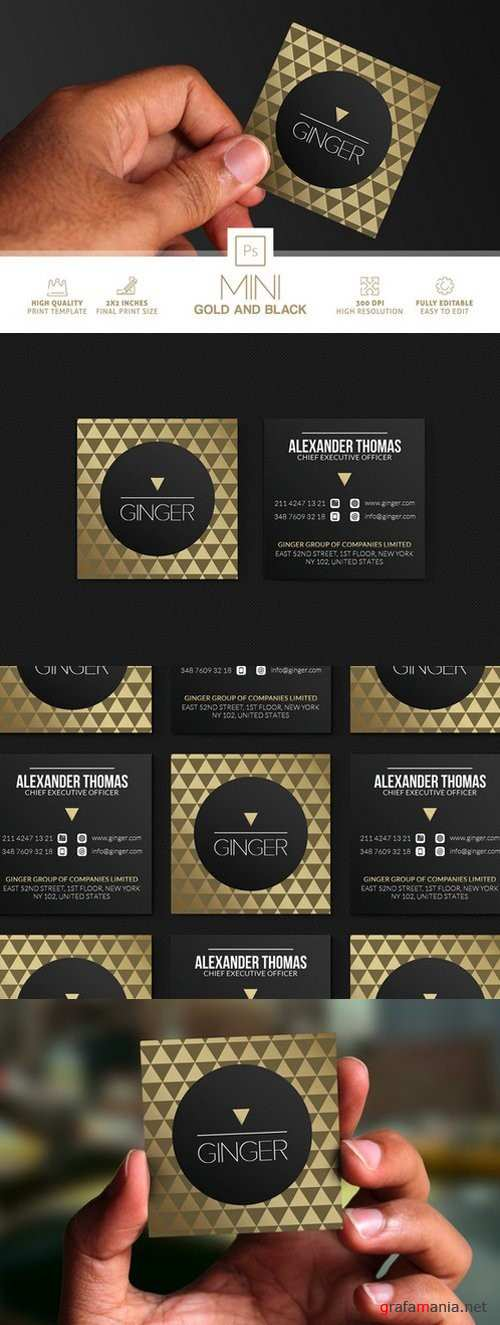 Mini Gold And Black Business Card - 864806