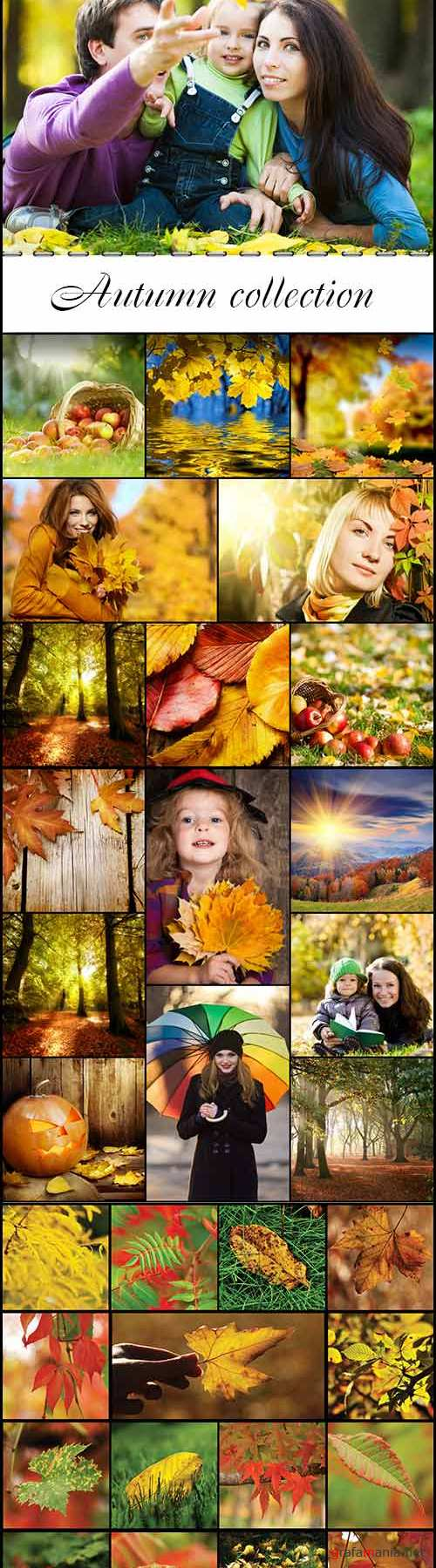 Autumn collection raster graphics