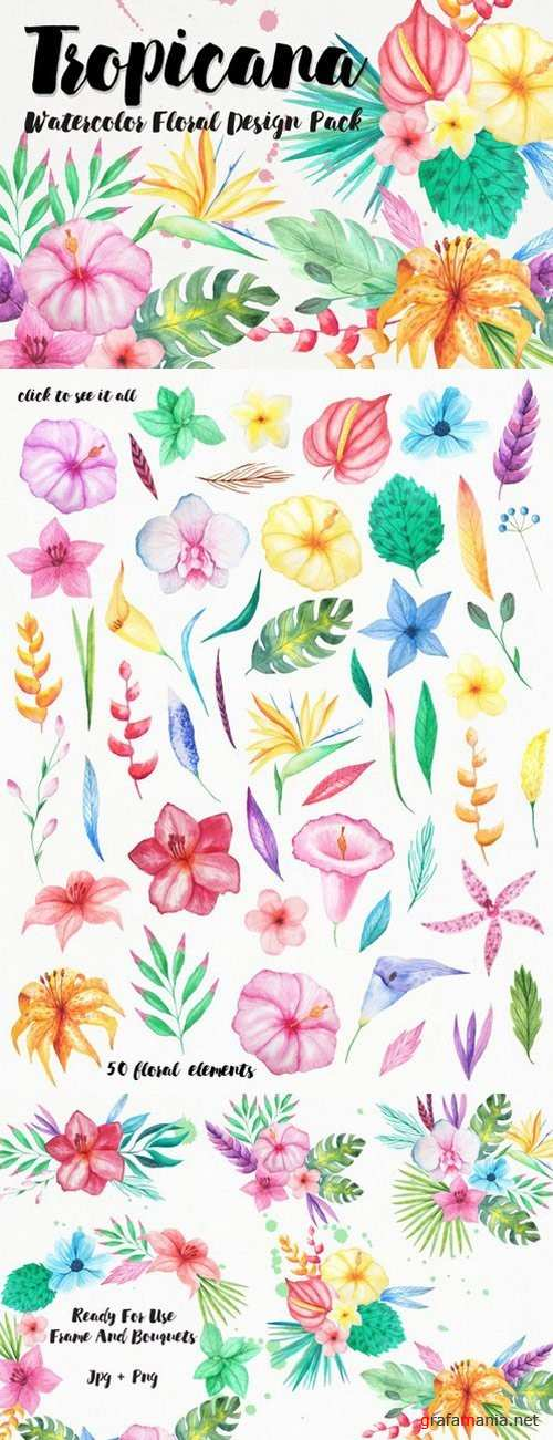Watercolor Tropical Floral Pack - 719315