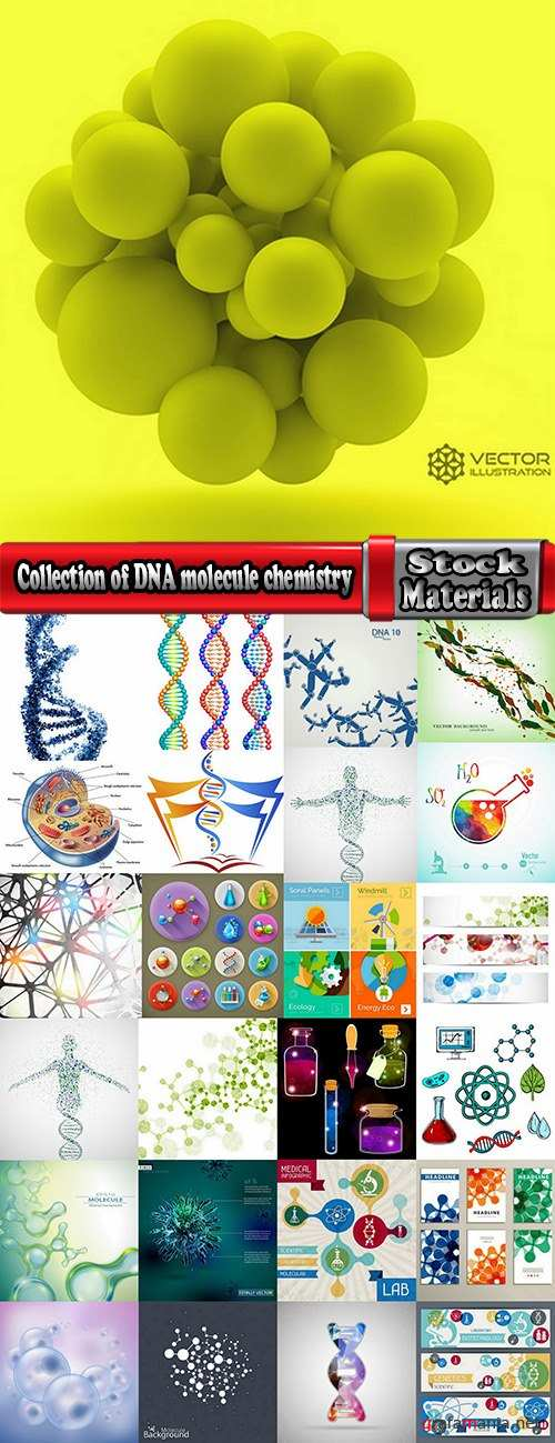 Collection of DNA molecule chemistry chemistry icon flyer banner vector image 25 EPS