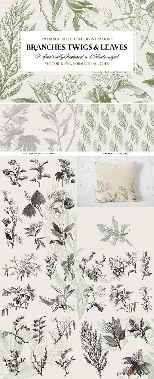 29 Branches, Twigs, & Leaves - 925672