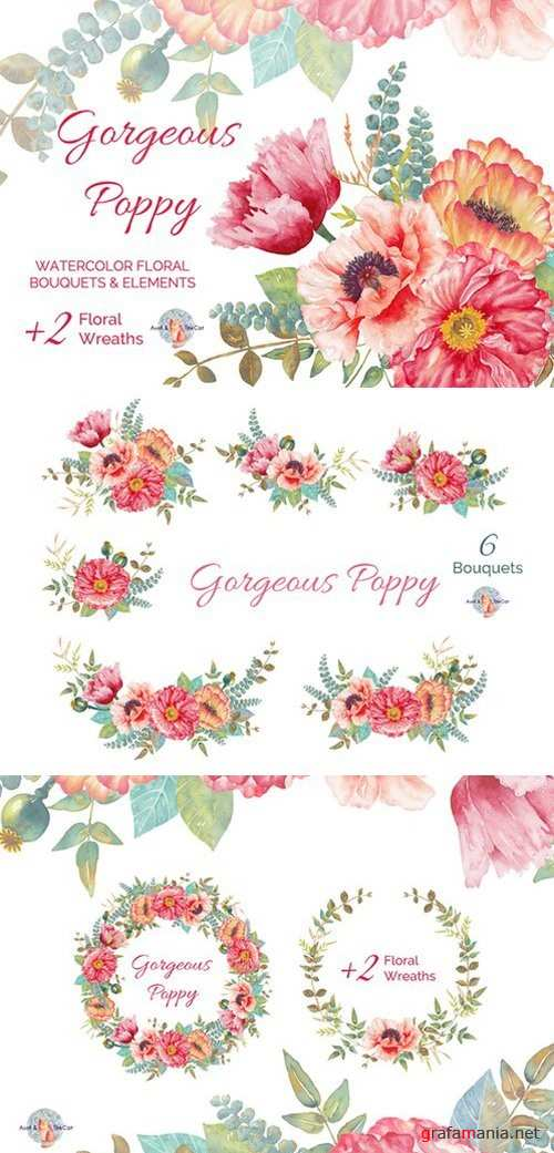 Gorgeous Poppy Watercolor Clipart - 448448