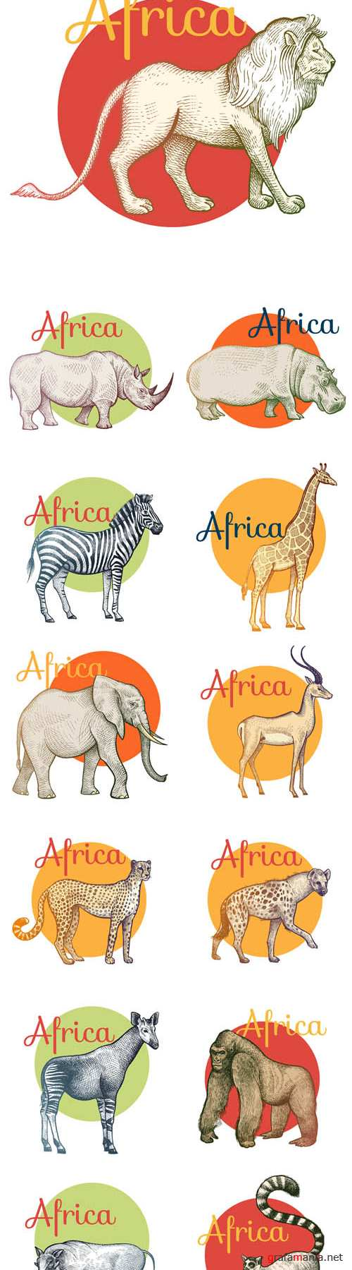 Vector African Animals